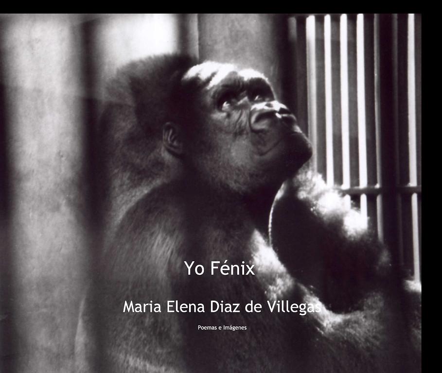 María díaz de villegas Yo_Fenix_book-XL