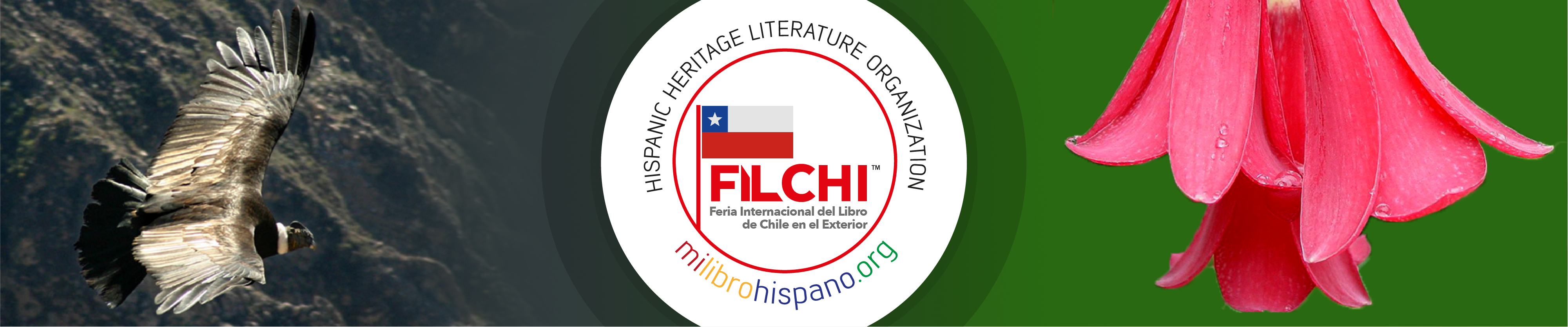 FIL Banner - Chile