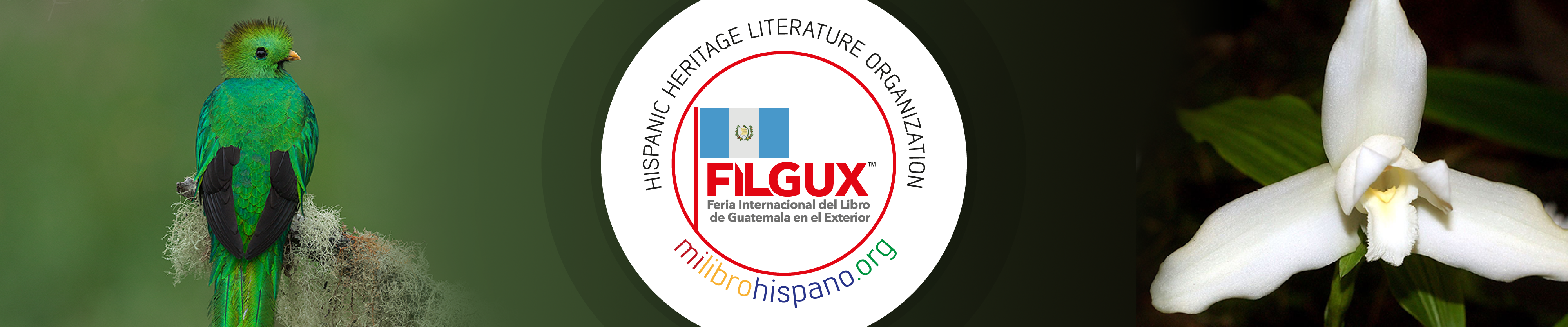 FIL Banner - Guatemala
